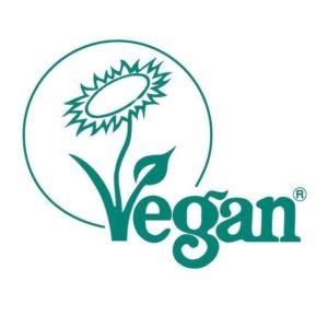 vegan ice cream mix